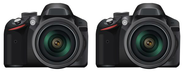 Two DSLR Cameras