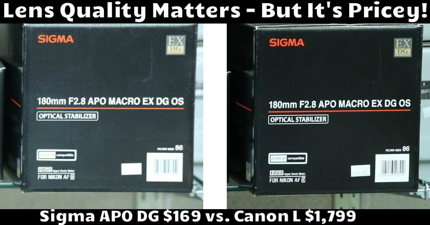 Sigma APO vs Canon L with Text