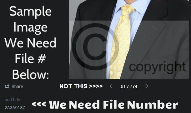 File Number